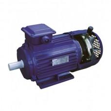 Асинхронные трехфазные  электродвигатели с электромагнитным тормозом серии 5АИ