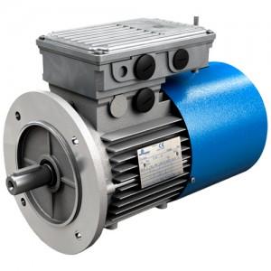 Двухскоростные трехфазные двигатели и двухскоростные трехфазные двигатели с тормозом Motovario серии D-DB