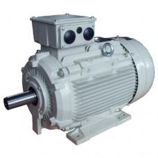 Асинхронные электродвигатели Motovario стандарта МЭК