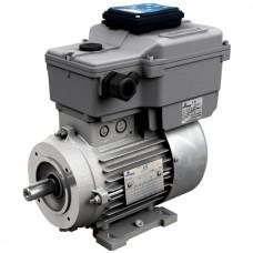 Инверторные двигатели Motovario серии DV